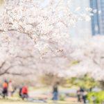 春休みに稼げる短期バイトおすすめランキング5選