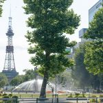 札幌の派遣会社おすすめランキング5選